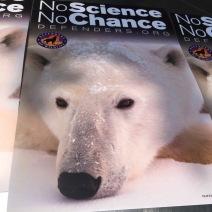 DC-polar bears in stress
